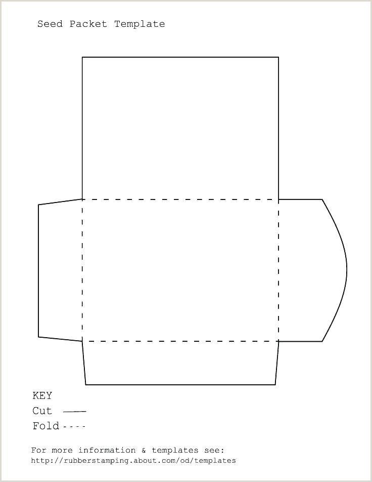 Envelope Printing Template Address Word Free Printable 5—7