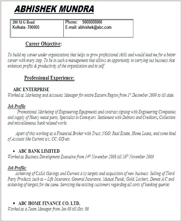 A Standard Cv format for Freshers Finance Cv Template