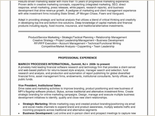 Account Manager Cv Best Insurance Account Manager Resume