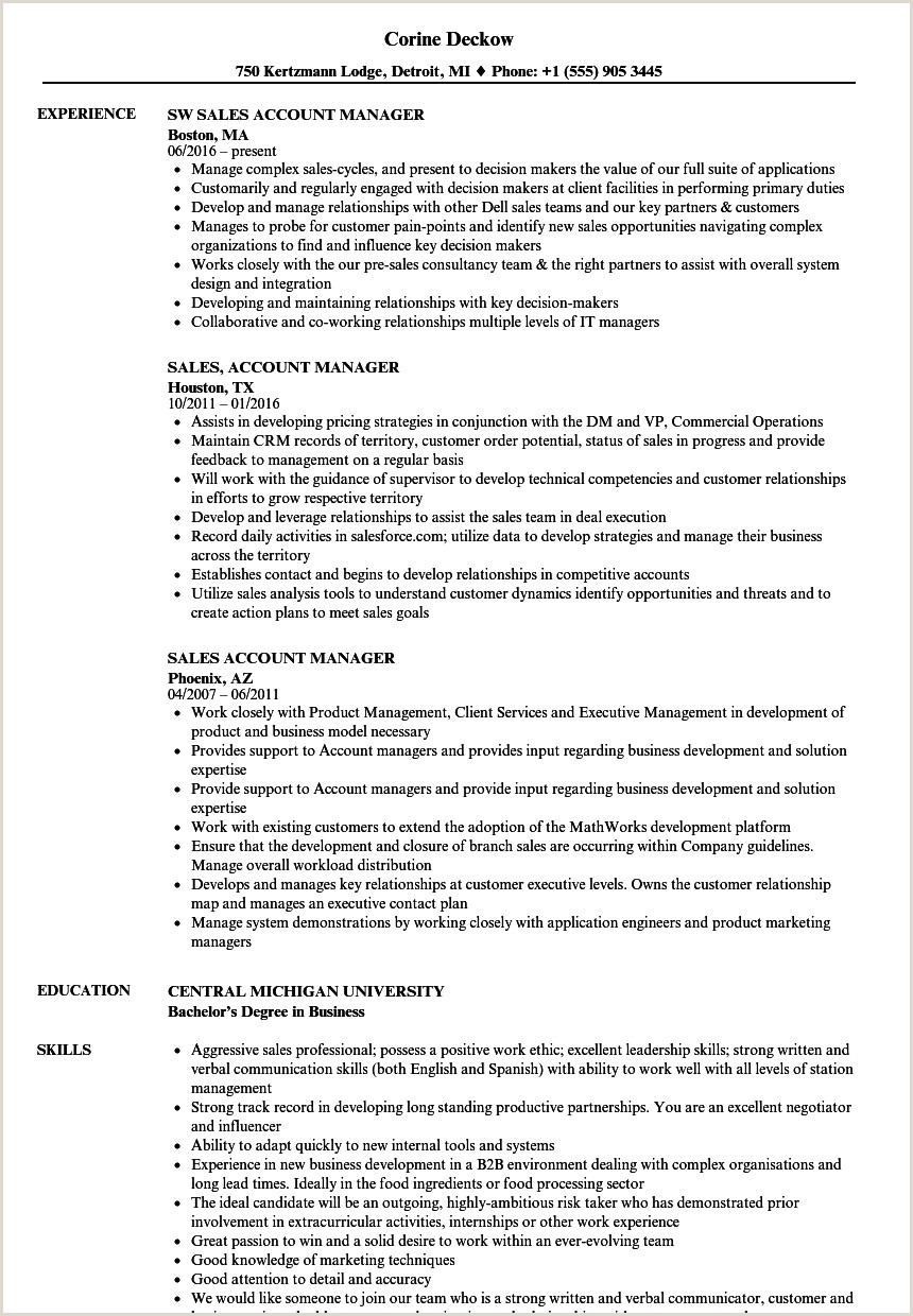 Account Manager Cv Technical Account Manager Resume