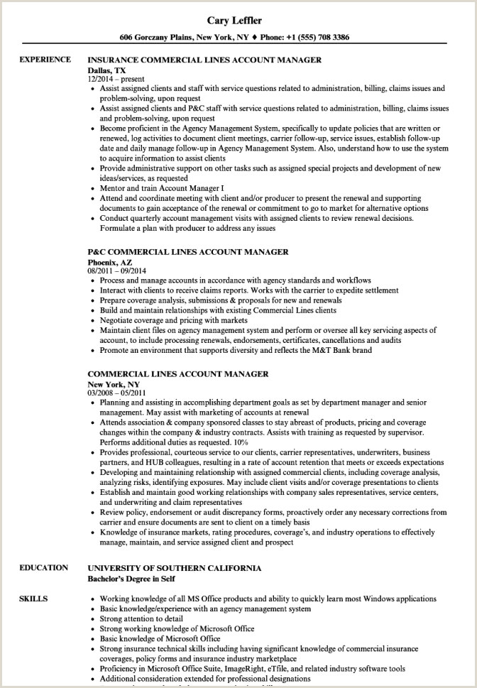 Accounting Executive Resume Samples Best Account