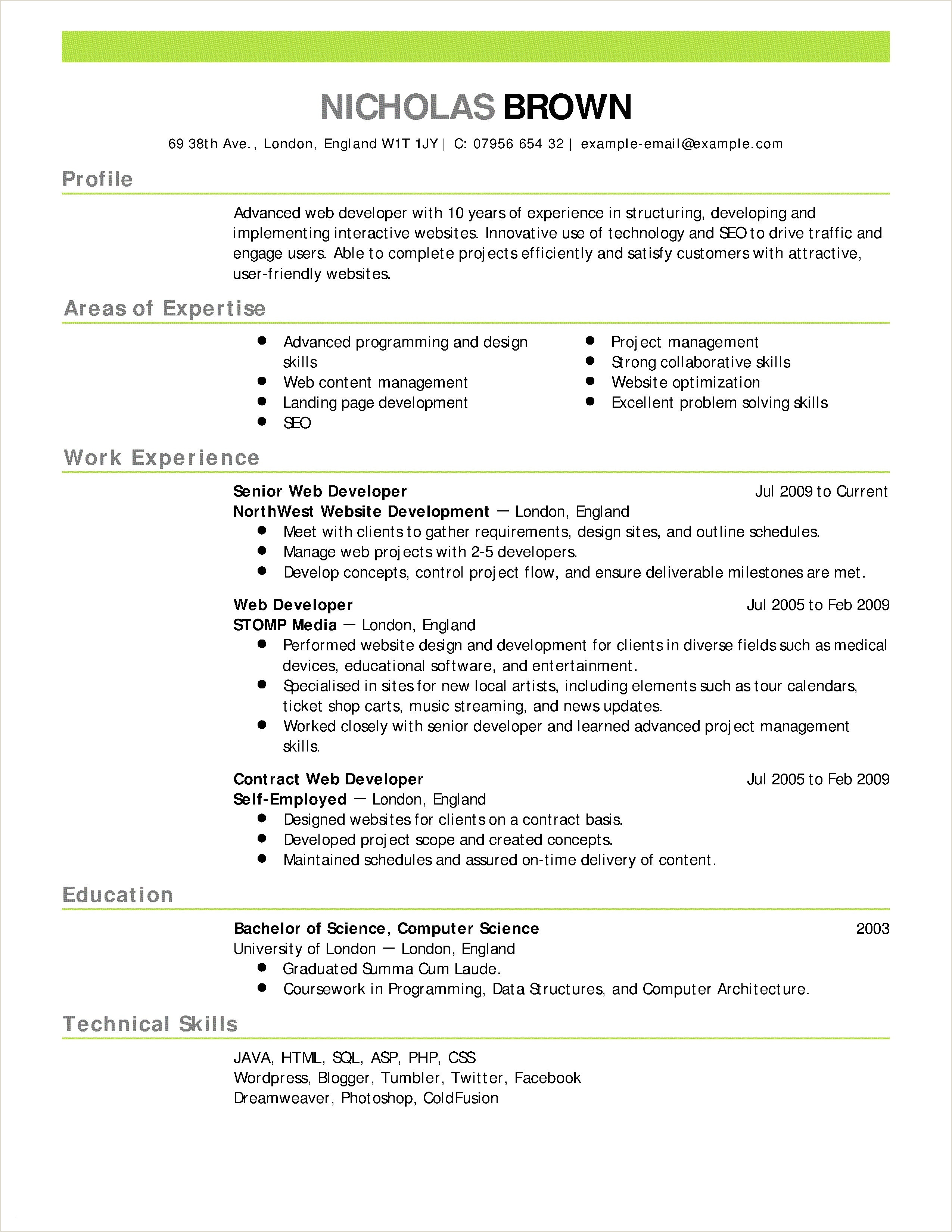 Accounting Professional Summary Examples New Accounting Resume Summary