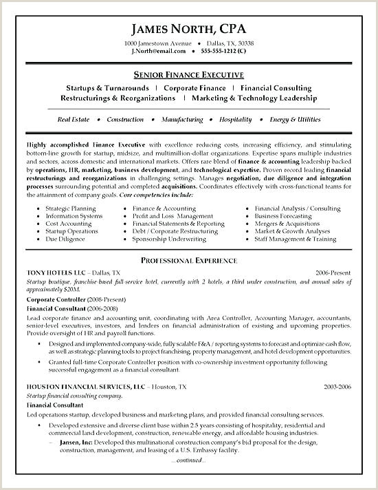 consultant resume format – paknts