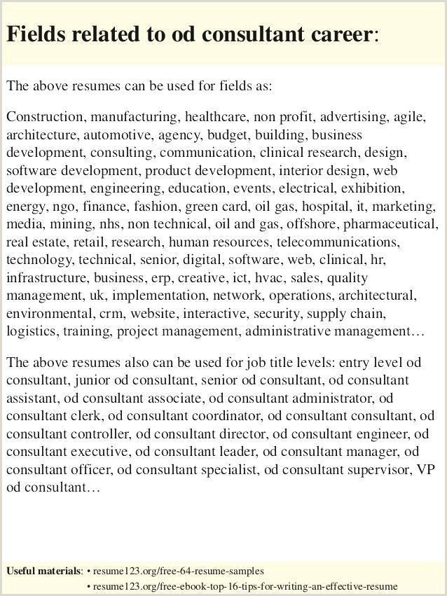 Advertising Account Executive Resume 85 Executive Level Resume Samples