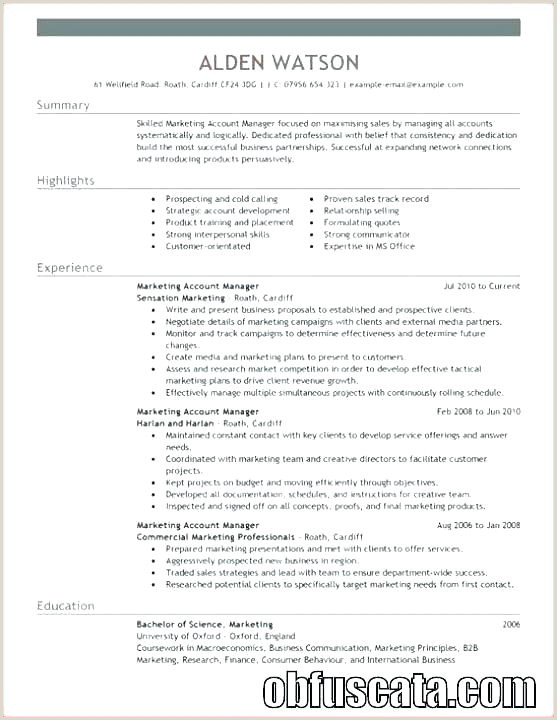 Advertising Account Executive Resume Account Manager Resume Template