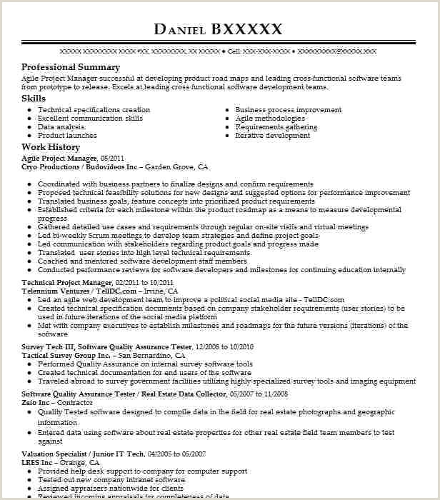 Agile Project Manager Resume Project Manager Skills Resume – Thrifdecorblog