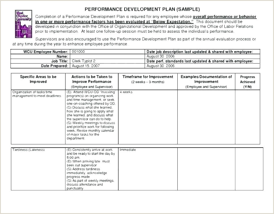 coaching and development plan template