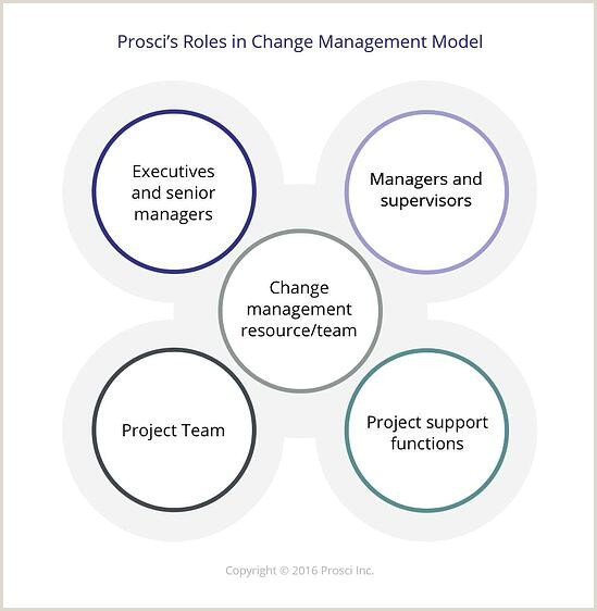 Employee Roles In Initiating Successful Change Management
