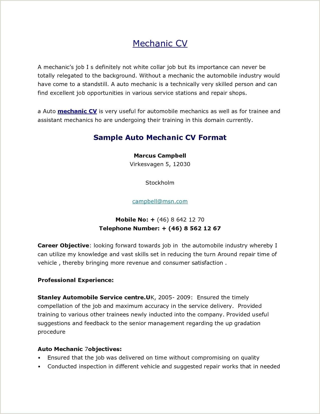 Best Cv format for Un Jobs Best Cv De Base Objective A Resume Xenakisworld