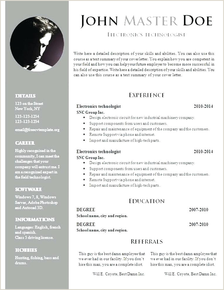 Best Fresher Resume Format Download In Ms Word Professional Resume Formats Paper Best Ideas About Samples