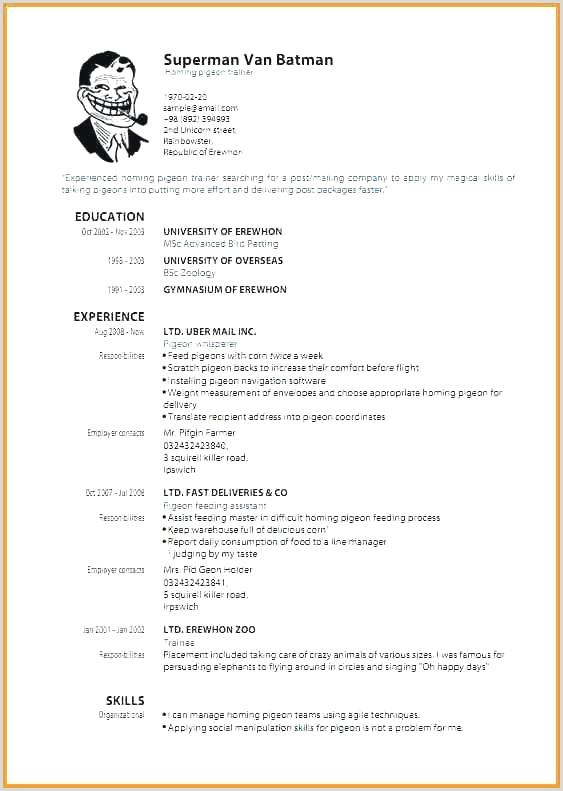 Best Corporate Resume format Elegant Effective Resume format