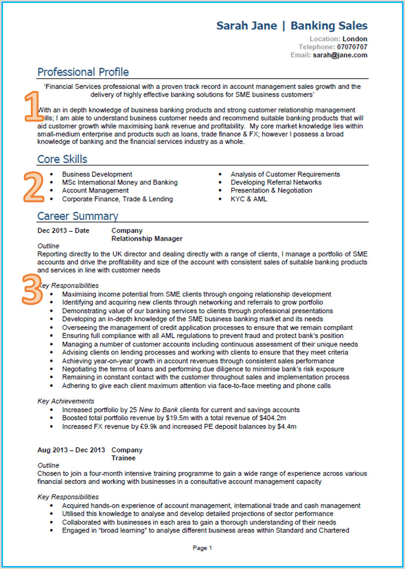 1 Page Cv Template Uk 1 Cv Template