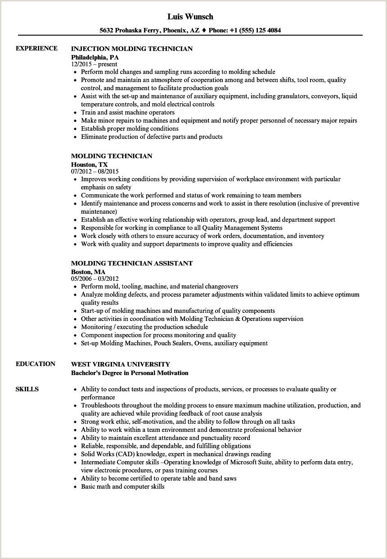 Biomedical Equipment Technician Resume Molding Technician Resume Samples