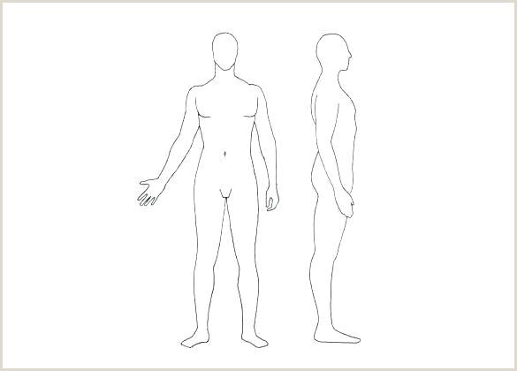 blank body template – digitalhustle