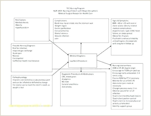 Blank Nursing Concept Map Template Free Concept Map Template
