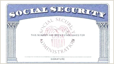 Blank Social Security Card Stock Image Isolated