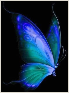 Blue butterfly Border Designs 577 Best Blue butterfly Images In 2019