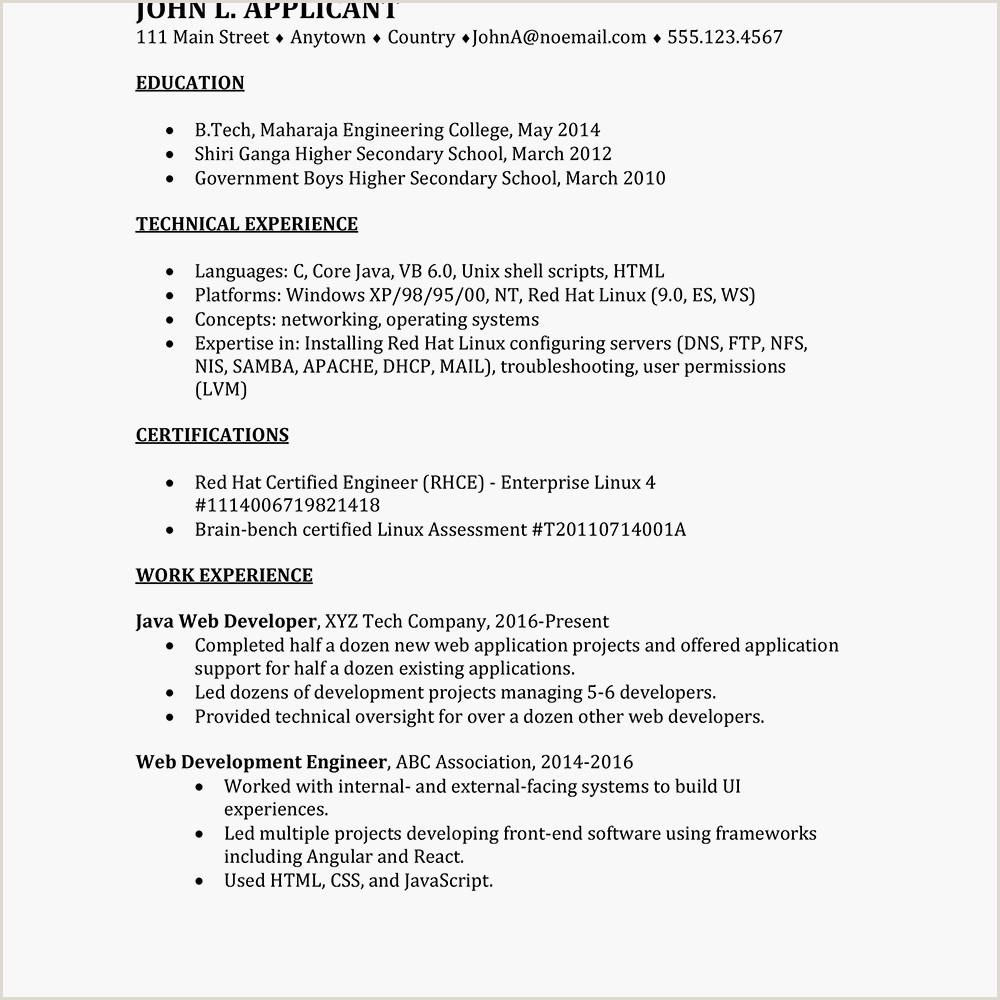 Bou Standard Cv format International Information Technology Cv Example