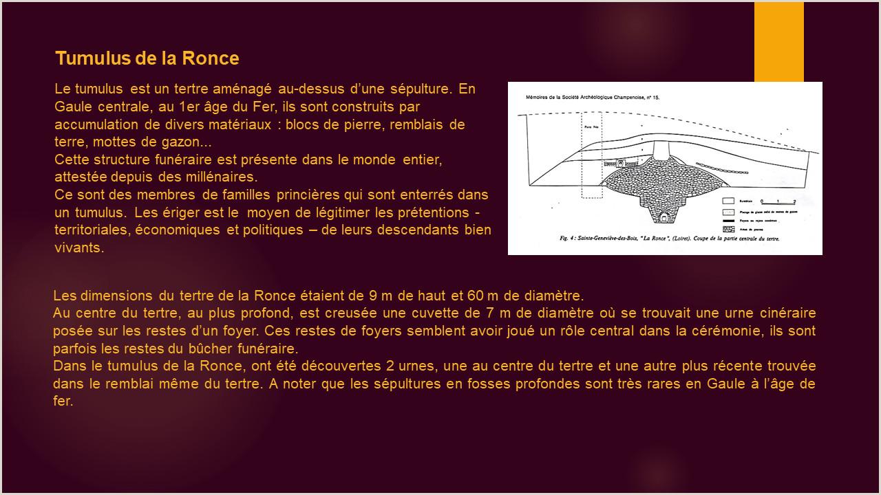 Bou Standard Cv format Ronce Site De Museechatilloncoligny