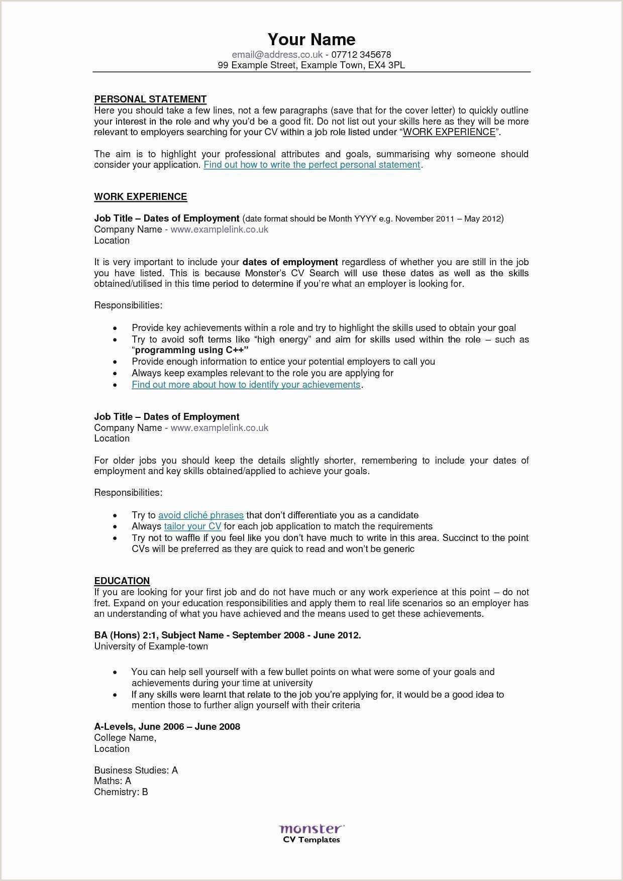 British Standard Cv format Bartender Skills Resume Professional Cv Professional Example