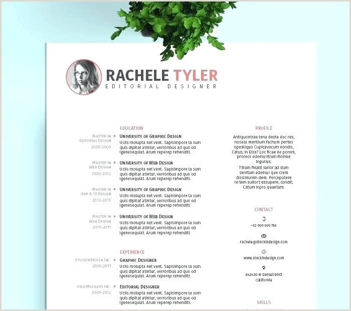Brochure Format Google Docs Template For Lovely Pamphlet