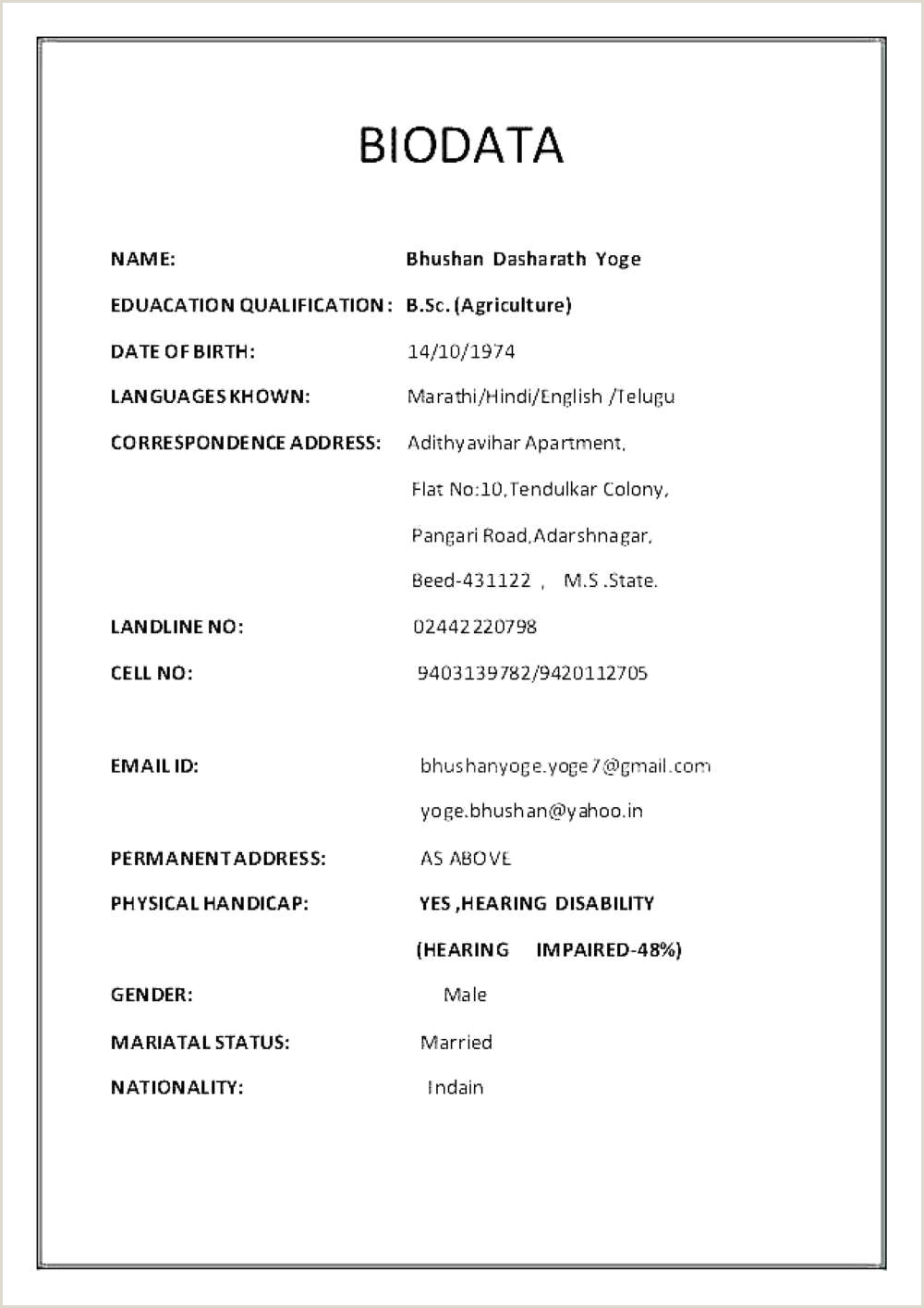 Bsc Fresher Resume format Download Pdf Resume Template Word Free Download – Flamingo Spa