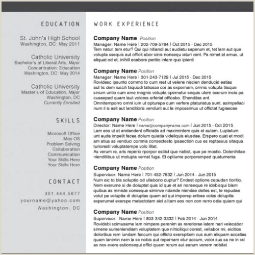 Career Builder Resume Template Professional Career Builder