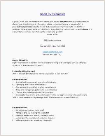 25 Professional Sales Resumes Examples
