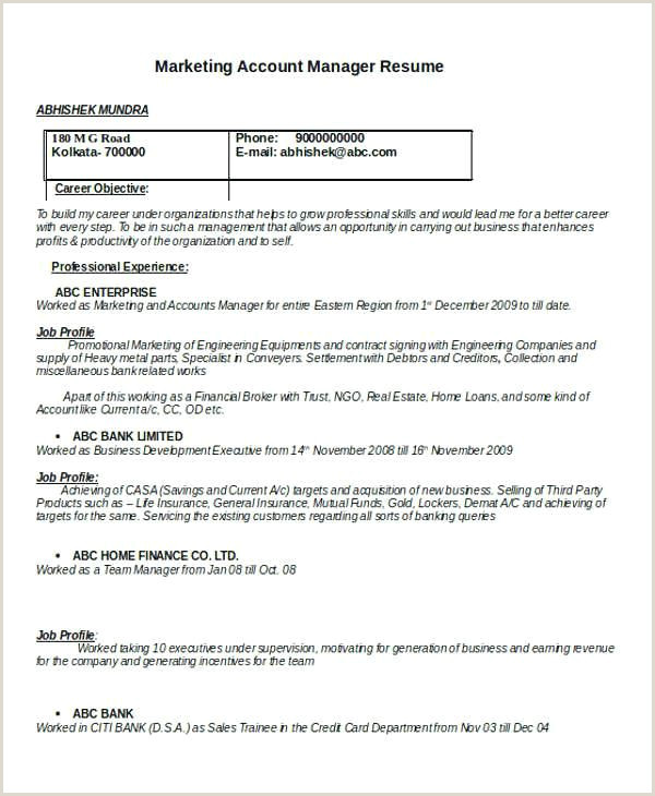 61 Finance Manager Resume Examples