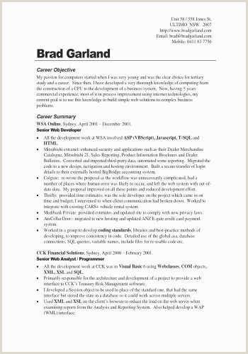 Career Objective for Web Developer Web Designer Resume Examples Professional Web Designer