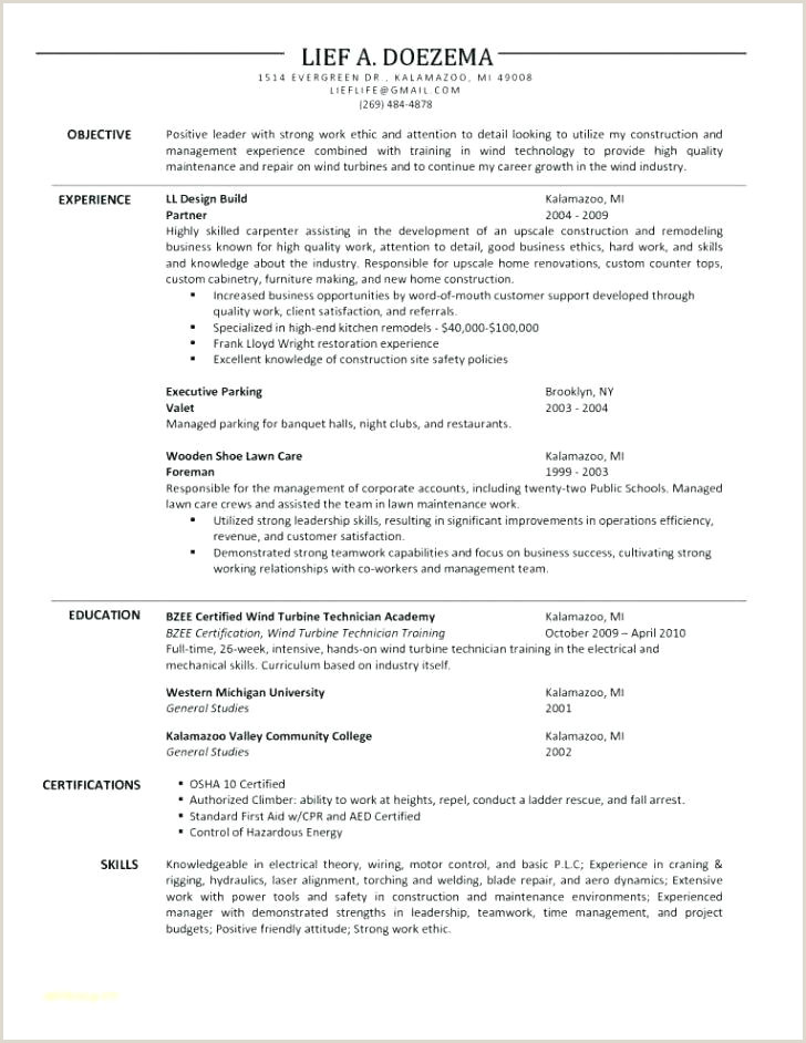 Carpenter Resume Template Job Description Example Word
