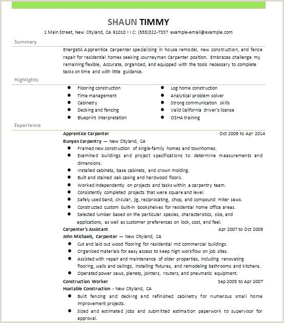 Carpenter Resume Sample Luxury Journeyman Carpenter Resume And Carpenter Resume