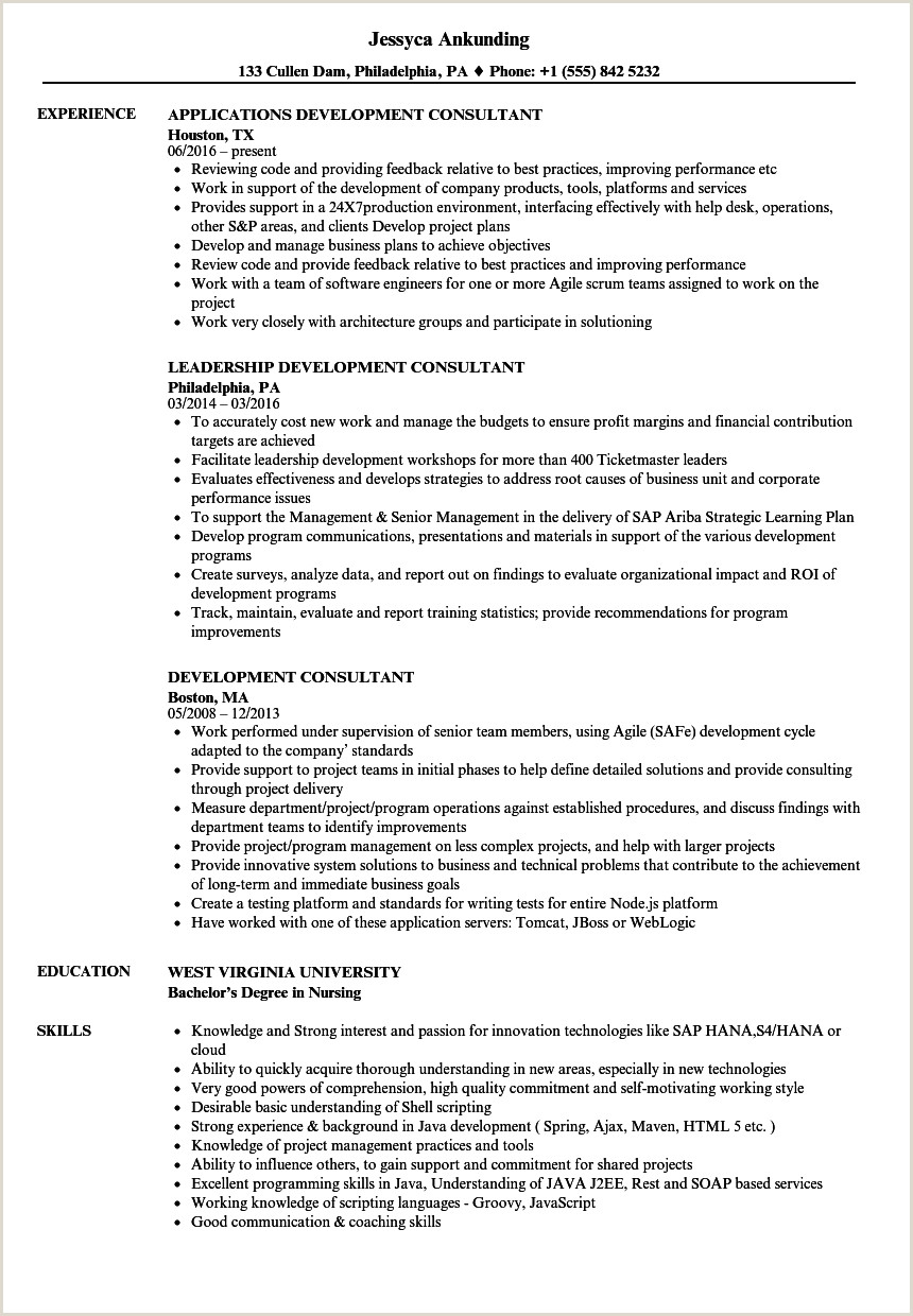 Development Consultant Resume Samples