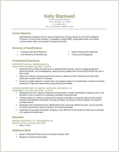 Ceo Resume Sample Doc Resume Builder Free Resume Builder