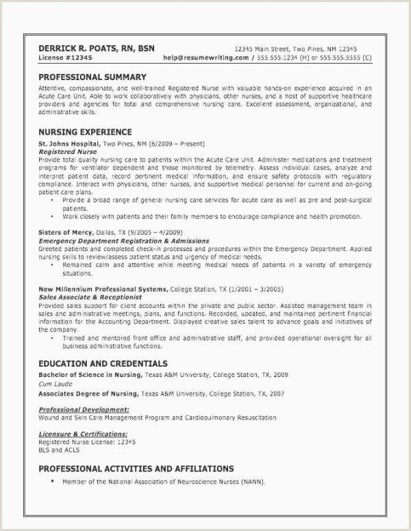 Ceo Resume Summary Scientific Paper Example Luxury Academic Projects In Resume