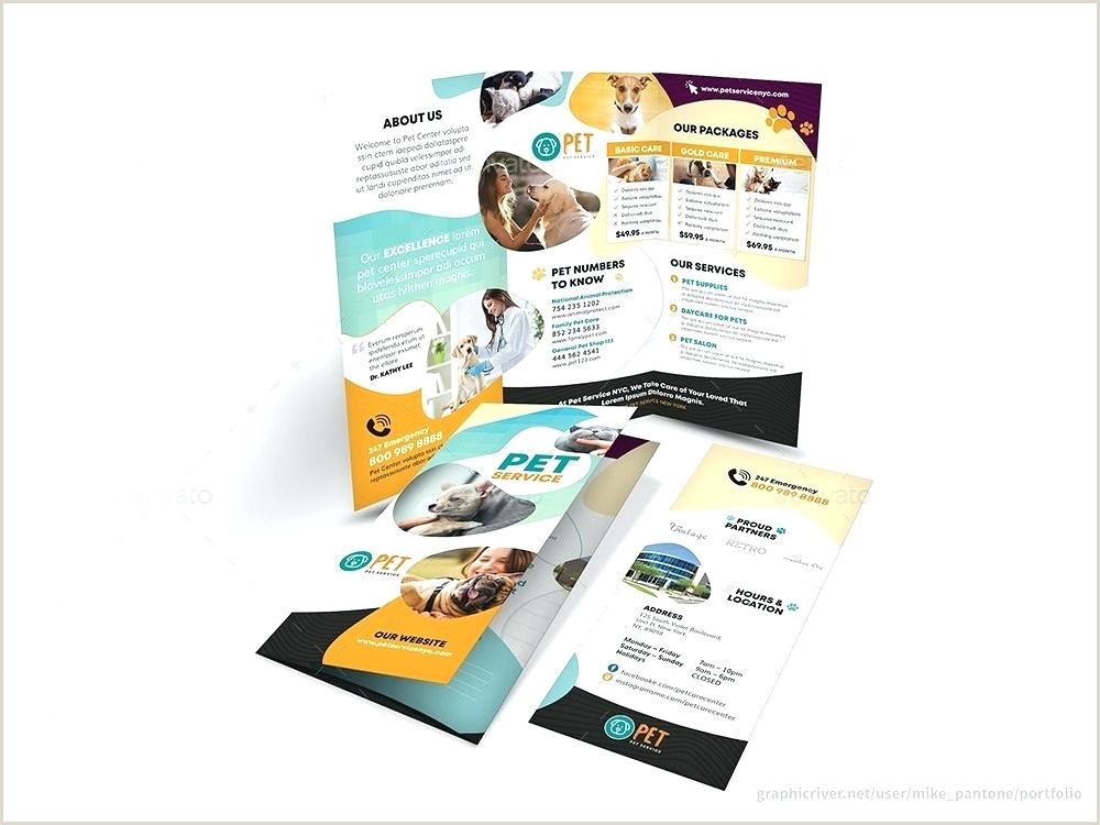 campaign flyer template – conceiving