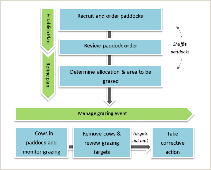 Cms Corrective Action Plan Pasture Allocation Dairynz