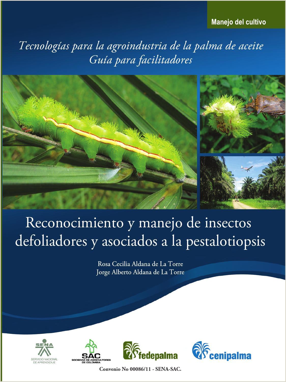 Gua de reconocimiento y manejo de insectos defoliadores y