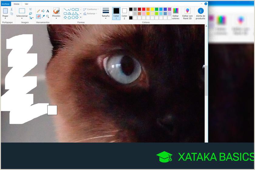 Como Hacer Hoja De Vida formato Microsoft Paint C³mo Hacer La Goma De Borrar Más Grande