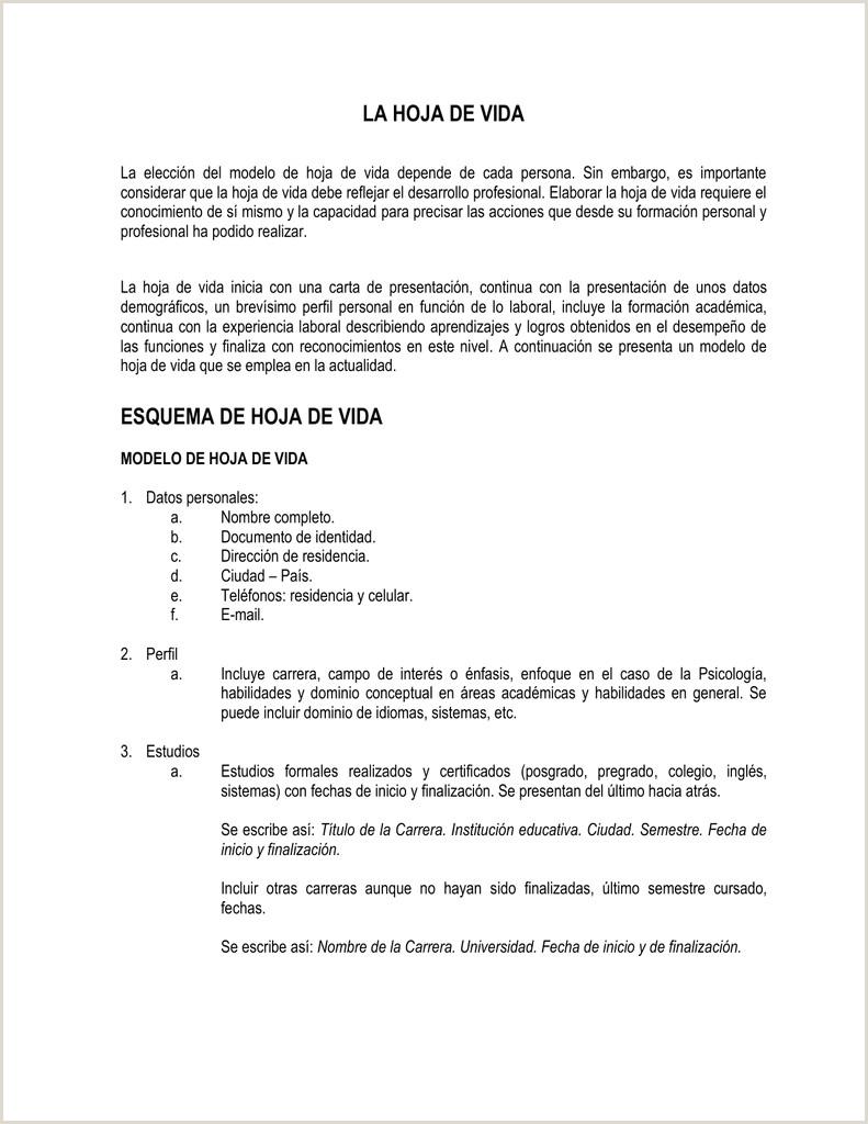MODELO DE HOJA DE VIDA POR LOGROS