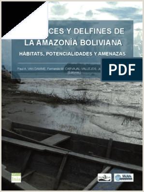 Como Hacer Una Hoja De Vida Bolivia Los Peces Y Delfines De La Amazona Boliviana Hábitats