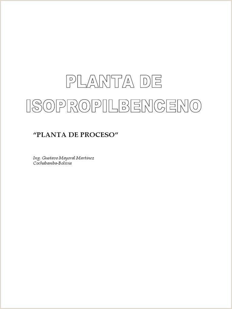 Planta de Proceso de Cumeno