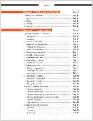 Como Hacer Una Hoja De Vida Corporativa Manual De Identidad Corporativa by Fernando Dias Da Silva