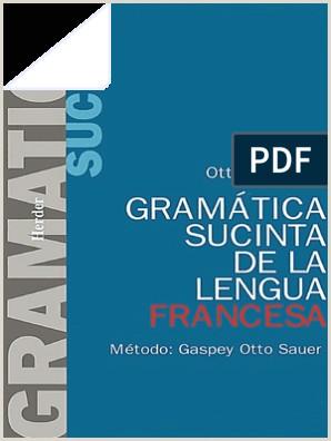 Gramatica Sucinta de La Lengua Francesa