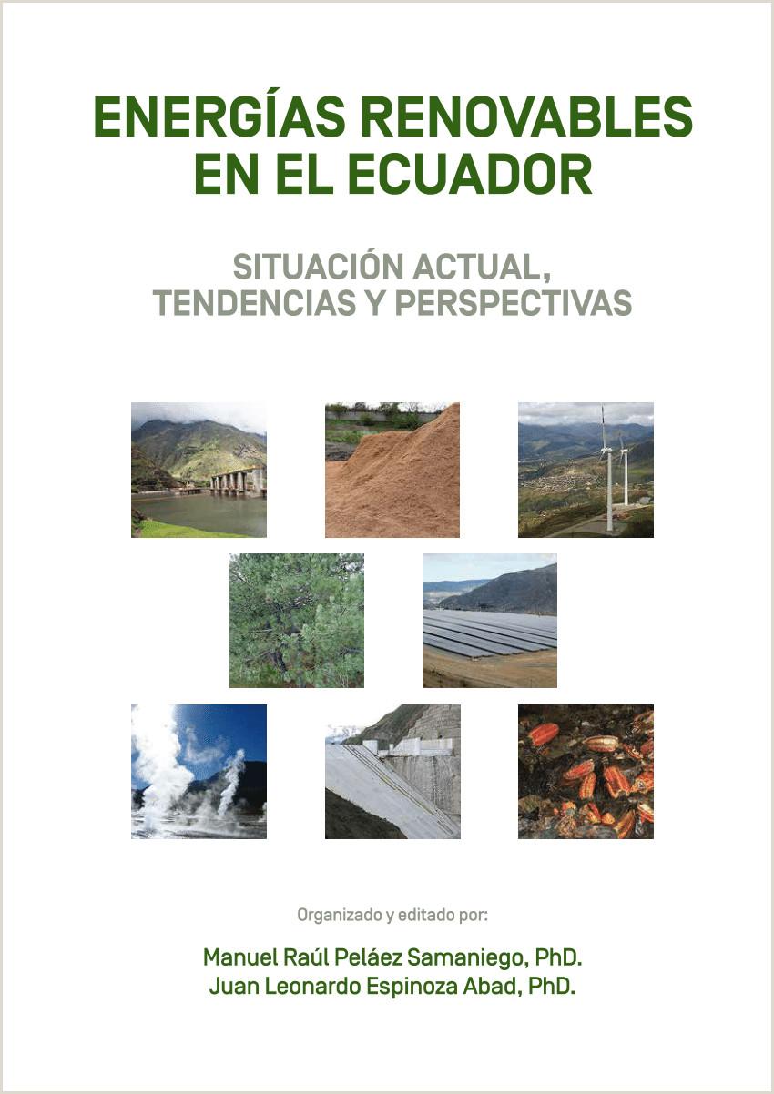 Como Hacer Una Hoja De Vida formato Ecuador Pdf Hidr³geno Electroltico Perspectivas De Producci³n Y