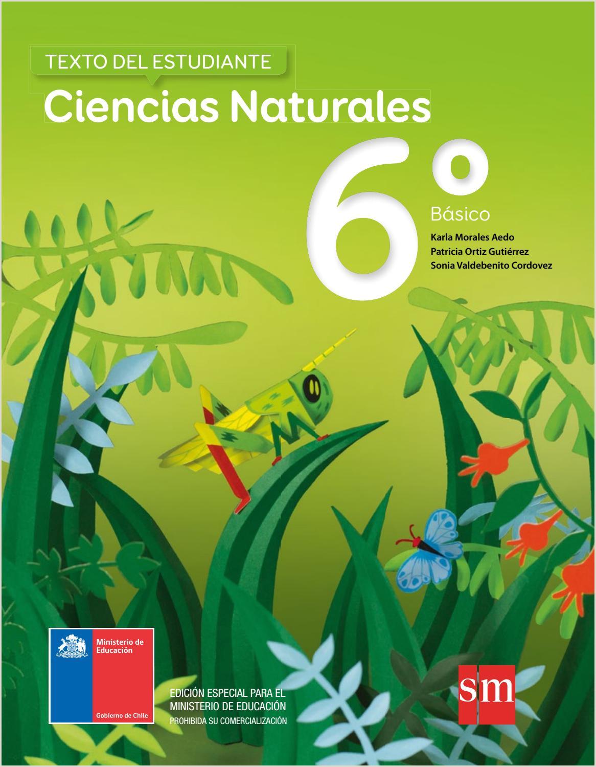 Como Hacer Una Hoja De Vida Para Hacer Practicas Ciencias Naturales 6º Básico Texto Del Estudiante by Eduardo