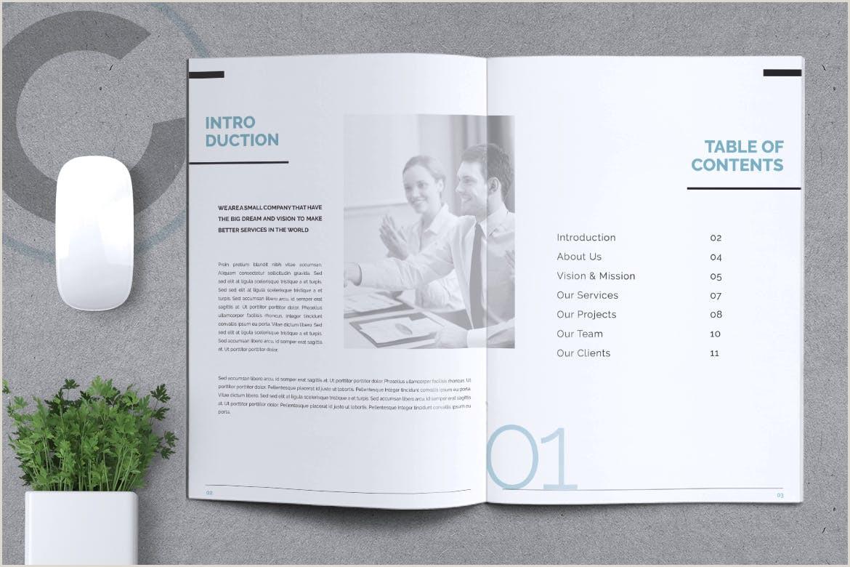 Chrome pany Profile Brochure 12 Unique Pages