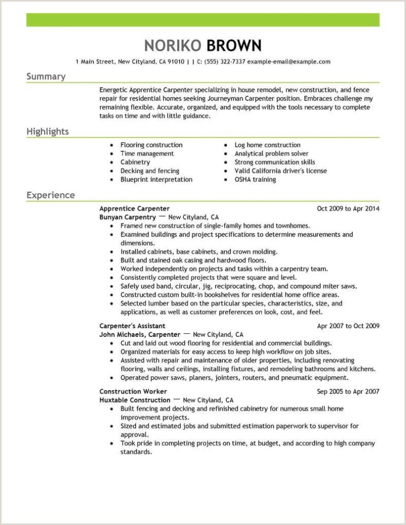 Construction Carpenter Resume formwork Carpenter Resume Template Free Stock S Hd