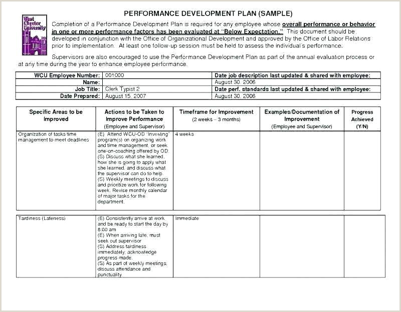 Employee Performance Report Template Daily Format Brilliant
