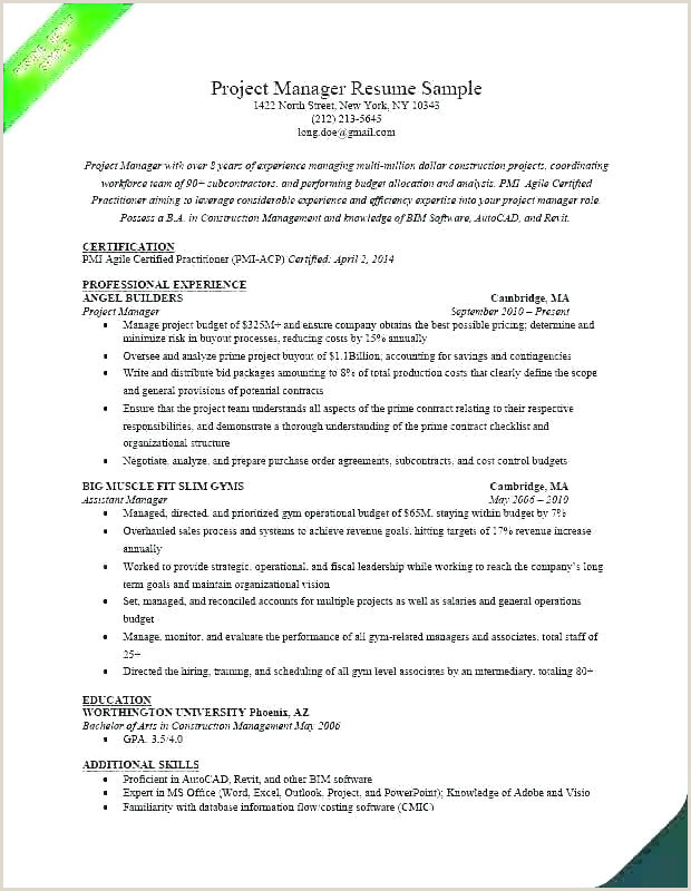 Project Manager Job Description Template fice Example